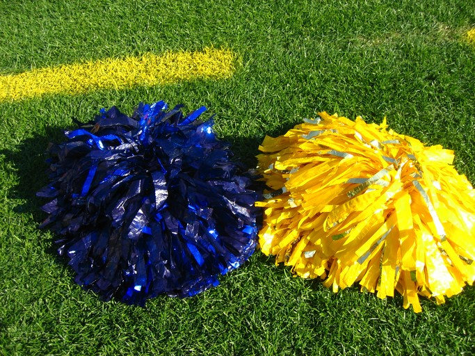 blue and yellow Pom-Poms on grass