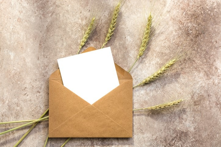 blank letter to younger self in envelope with decorative wheat