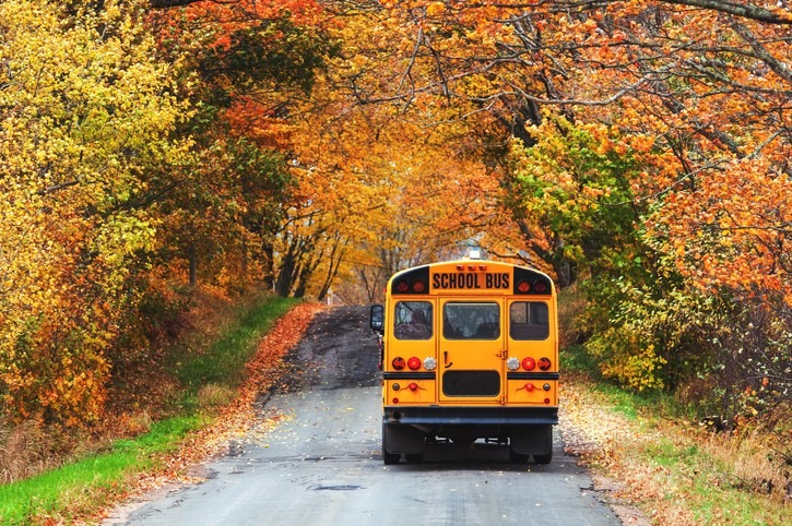 A school bus travels a rural backroad in late Autumn